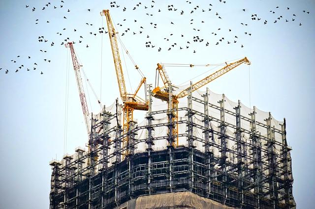 ptáci nad budovou.jpg